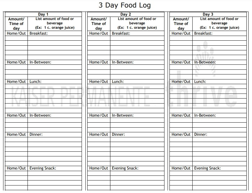 Food Log Template Excel from www.logtemplates.org